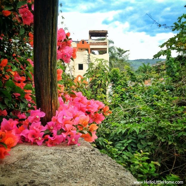 Casa Monarca view in Chacala, Mexico - www.HelloLittleHome.com