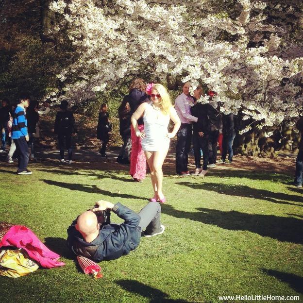 Brooklyn Botanical Garden Cherry Blossom Trees and Photo Shoot - www.HelloLittleHome.com