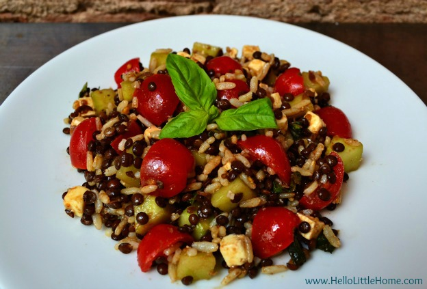 Lentil Brown Rice Salad