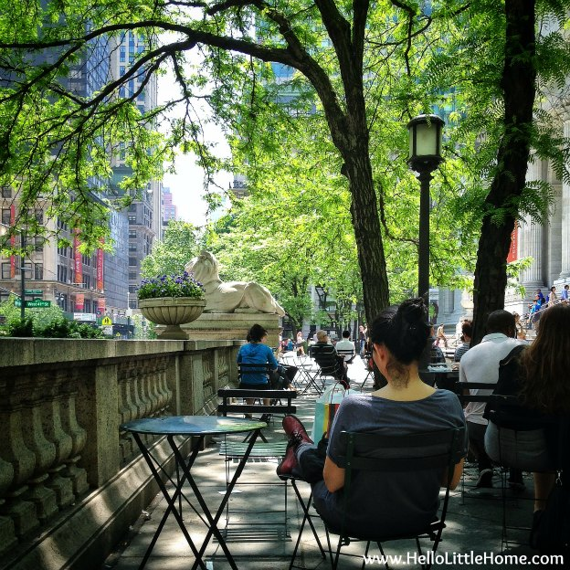 Lunch in front of the New York Public Library.