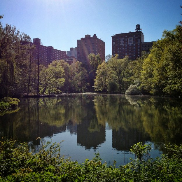 the-pool-in-central-park