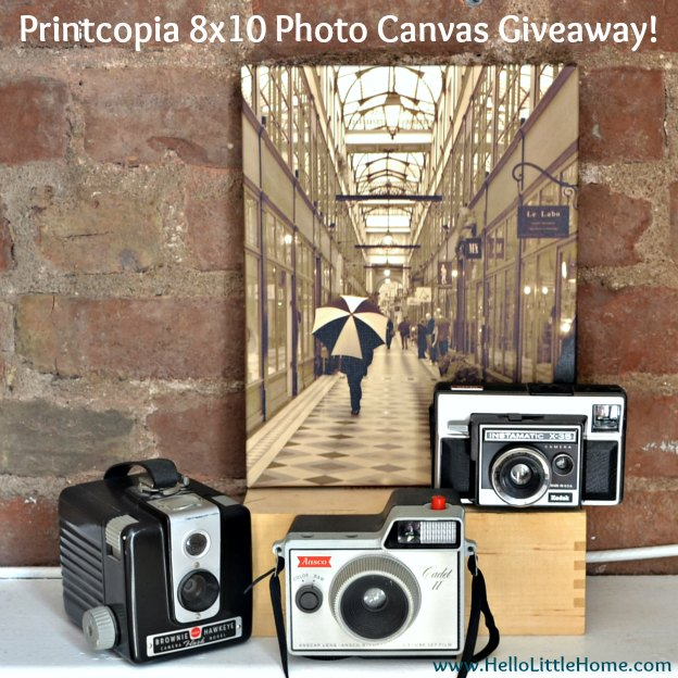 Printcopia 8x10 Photo Canvas Giveaway