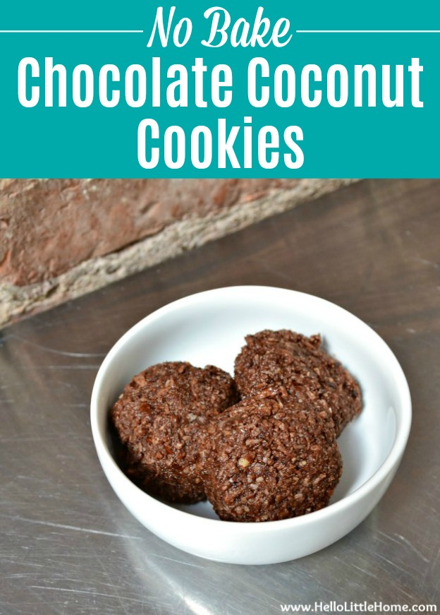No Bake Chocolate Coconut Cookies in a white bowl on a stainless steel counter.