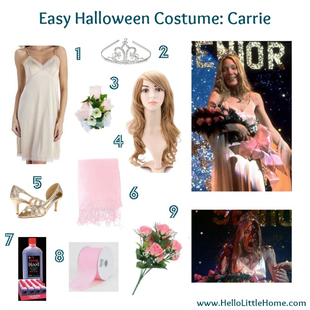 Easy Halloween Costume: Carrie