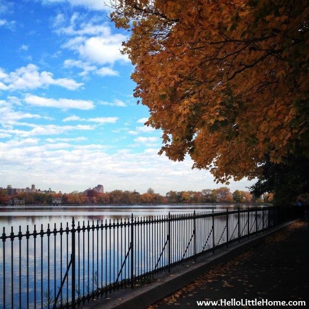 central-park-reservoir-fall-colors