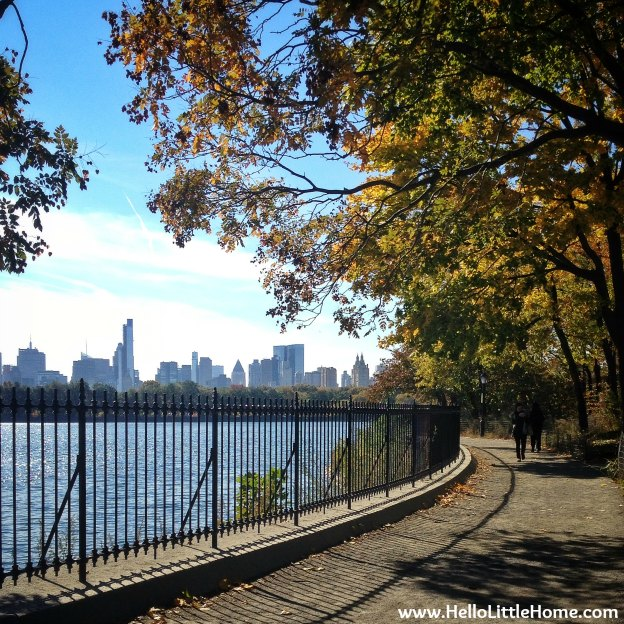 Central Park Reservoir View