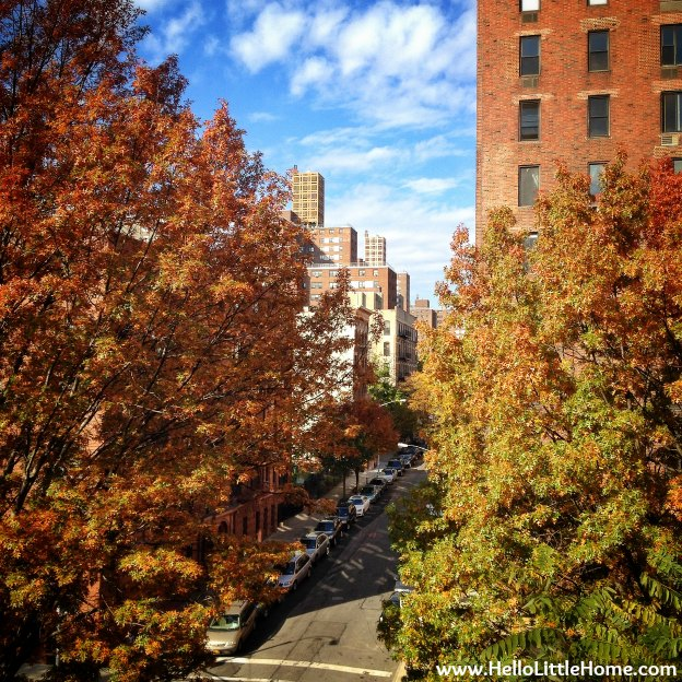 New York Street with fall colors.