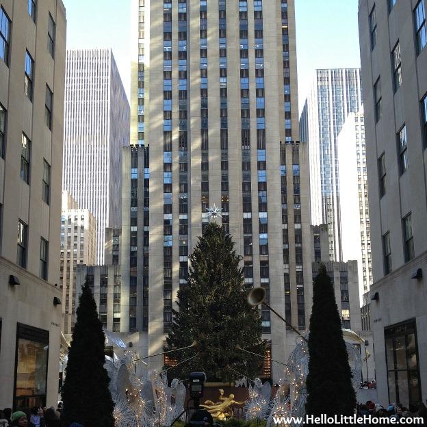 Rockefeller Center Christmas Tree 2013: NYC Holiday Tour