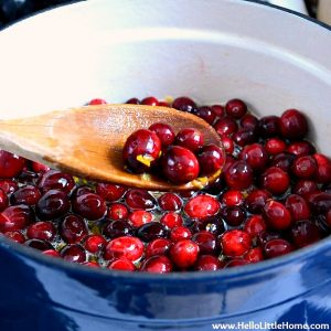 Cranberry sauce ingredients in a pot for homemade cranberry sauce.