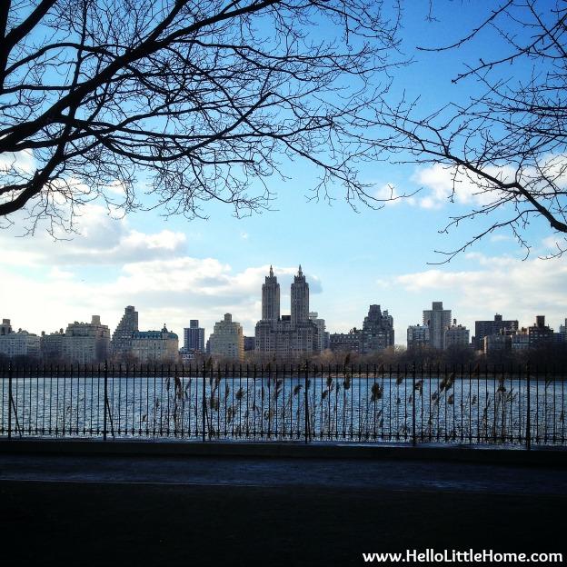 New York | Hello Little Home