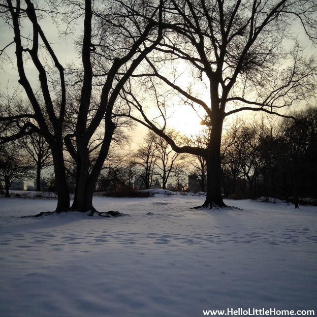 Snow and a Sunset in Central Park | Hello Little Home