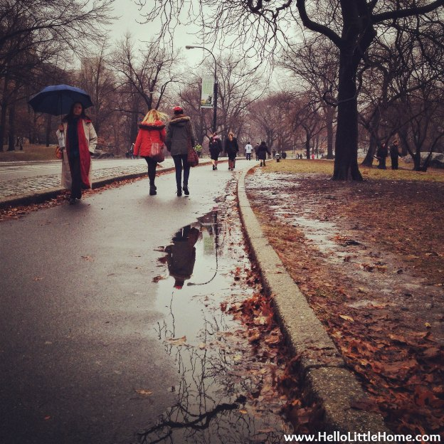 Rainy Day in Central Park | Hello Little Home