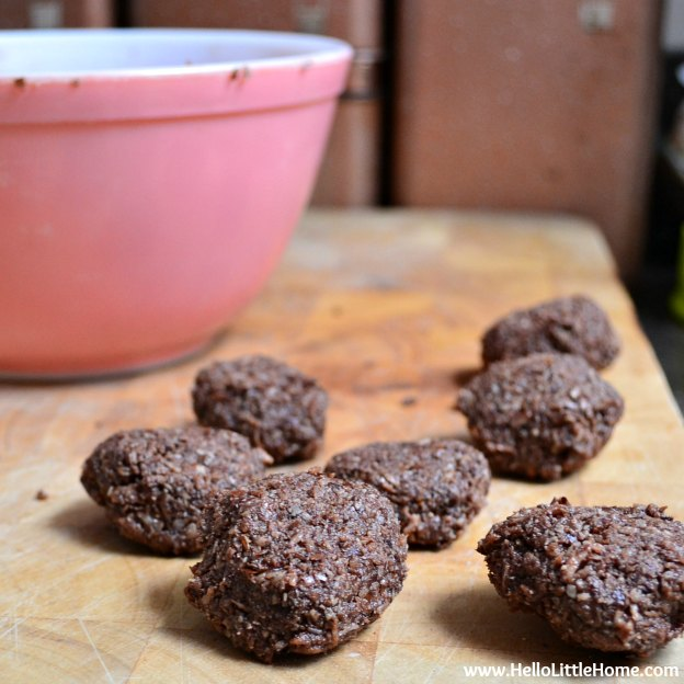 """Spicy Chocolate """"Cookies""""   Hello Little Home"""