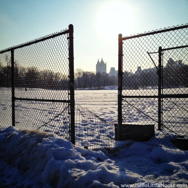 Snowy Central Park Baseball Field | Hello Little Home