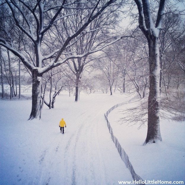 Snowy Central Park with a Man in a Yellow Jacket | Hello Little Home