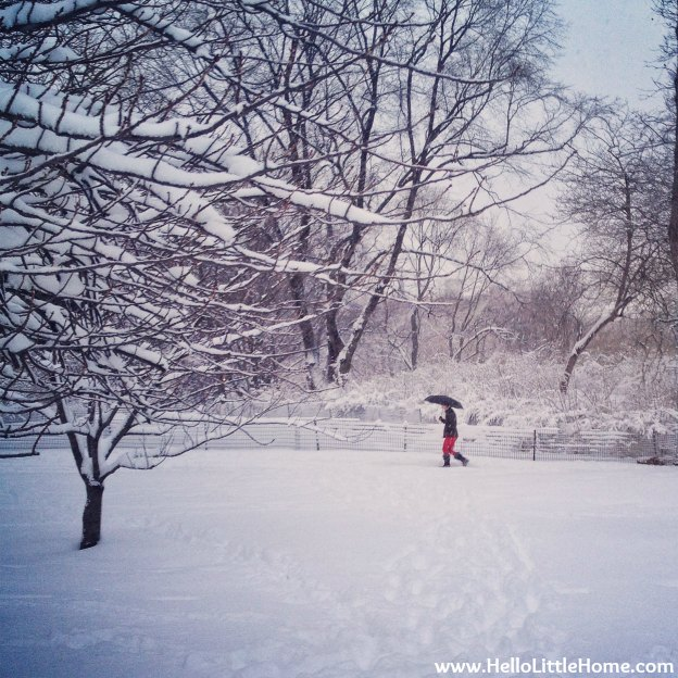 Snowy Central Park with a Woman Holding an Umbrella | Hello Little Home