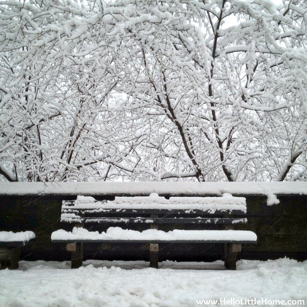 Snowy New York Bench | Hello Little Home