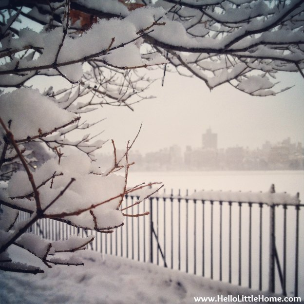 Snowy View of the Upper East Side | Hello Little Home