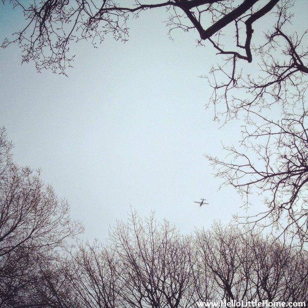 Plane in a Clear Sky | Hello Little Home