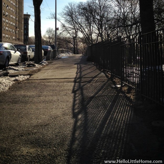 Afternoon Shadows in New York | Hello Little Home