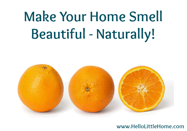 5 Ways to Improve Your Home for Free: Make Your Home Smell Beautiful | Hello Little Home
