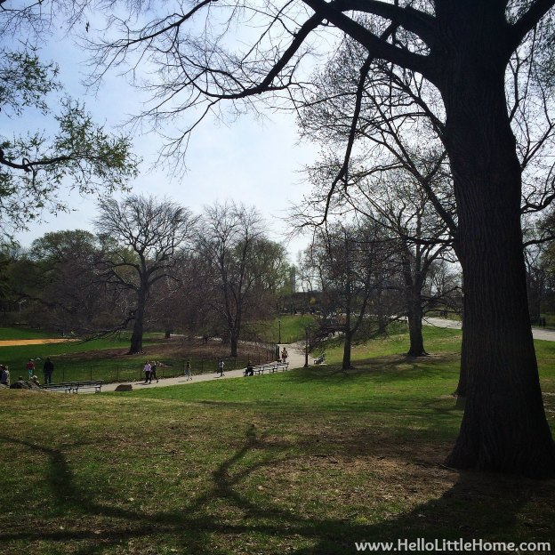 Spring in Central Park | Hello Little Home