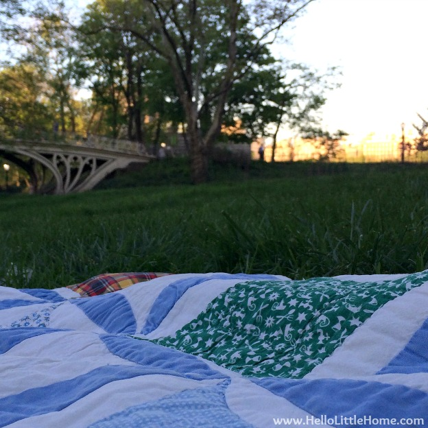 Picnic in Central Park | Hello Little Home