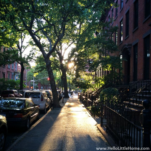 A Pretty Street in Brooklyn | Hello Little Home