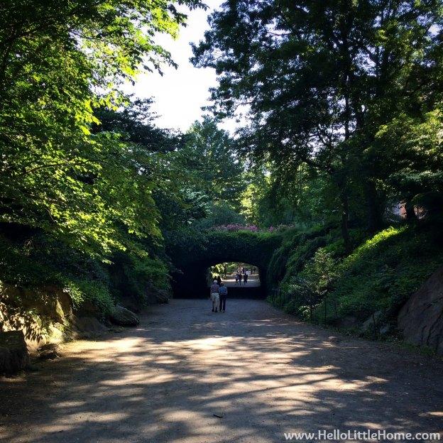 Central Park Bridge | Hello Little Home