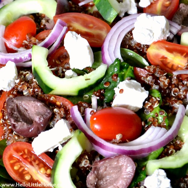 Closeup of healthy Greek Quinoa Salad with Veggies, Olives, and Feta