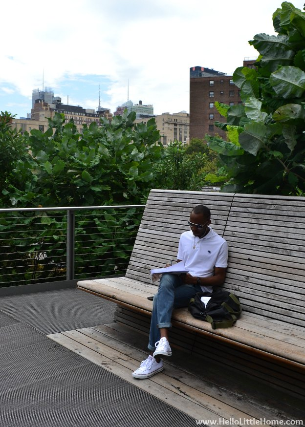 Explore NYC with Me: The High Line | Hello Little Home