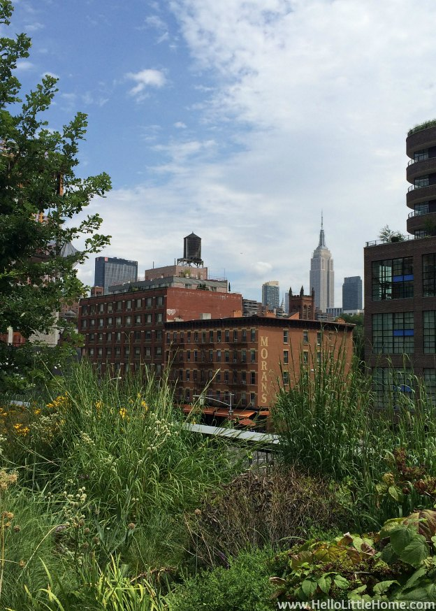 Explore NYC with Me: The High Line - View of the Empire State Building | Hello Little Home