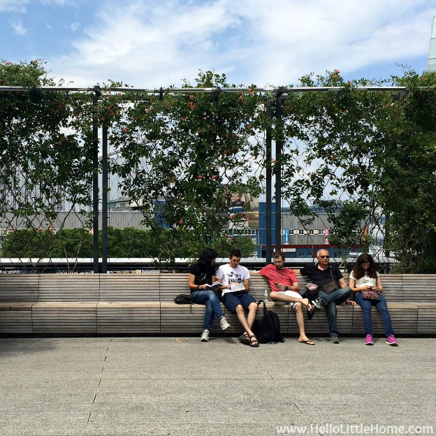 Explore NYC with Me: The High Line - Bench | Hello Little Home
