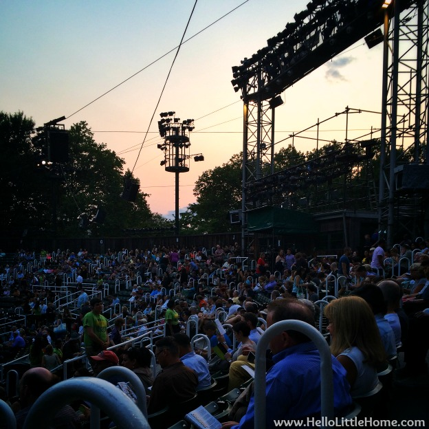 Shakespeare in the Park NYC | Hello Little Home