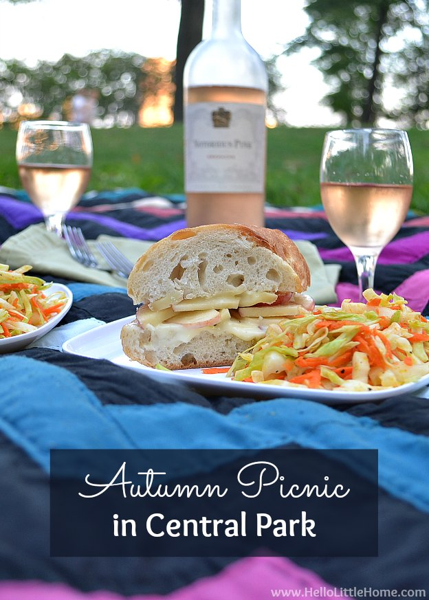 Autumn Picnic in Central Park with recipes for Brie & Apple Baguettes and Carrot-Cabbage Slaw! | Hello Little Home #style #vegetarian #fall