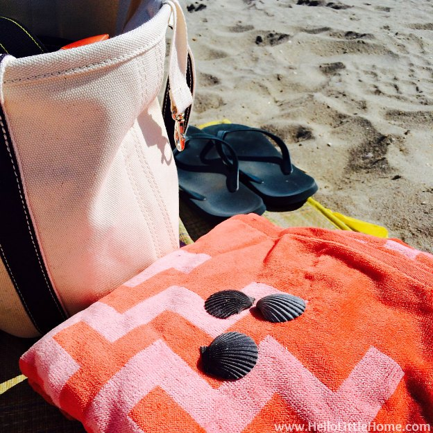 Explore NYC with Me: Beach Necessities | Hello Little Home