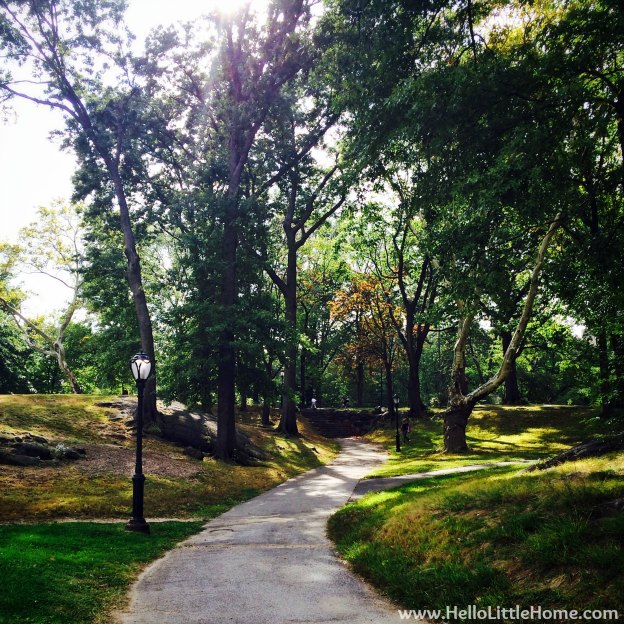 Central Park Path | Hello Little Home