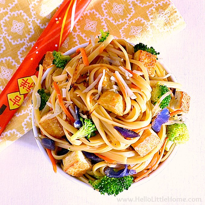 A bowl of veggie lo mein with tofu.