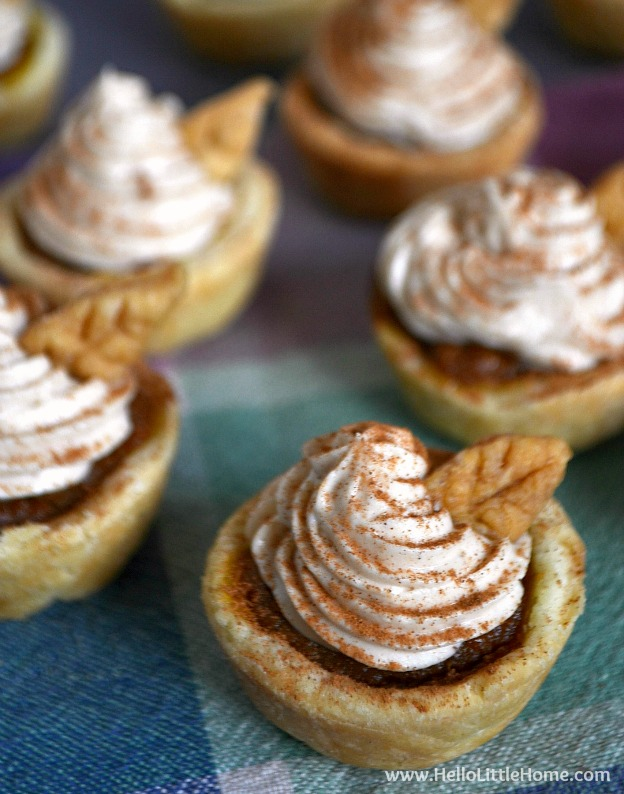 Mini Pumpkin Pies with Cinnamon Cheesecake Topping ... yum! Get this easy recipe + 100 other vegetarian fall recipes that are perfect for any occassion!   Hello Little Home