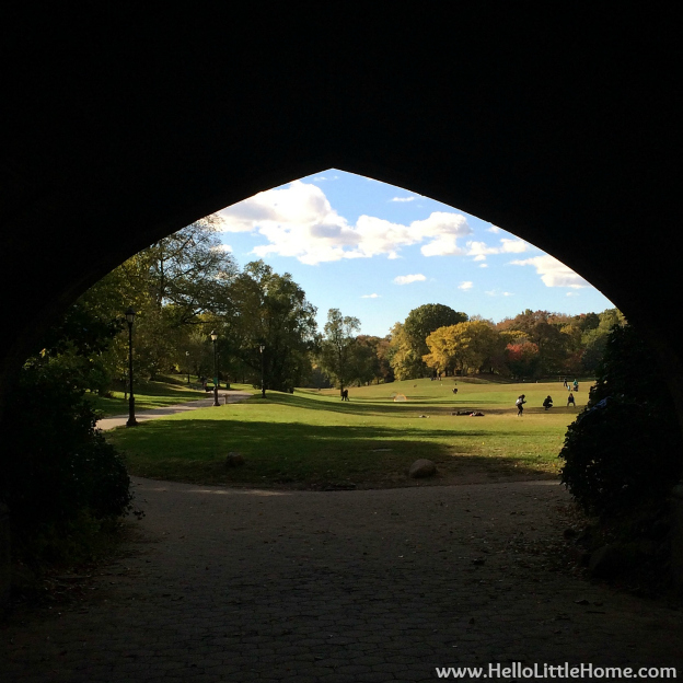 Prospect Park | Hello Little Home