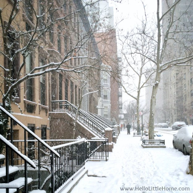 NYC Snow Storm   Hello Little Home