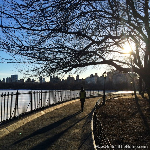 Central Park in March | Hello Little Home