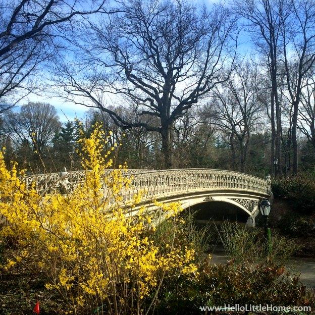 Reservoir Bridge in Central Park | Hello Little Home