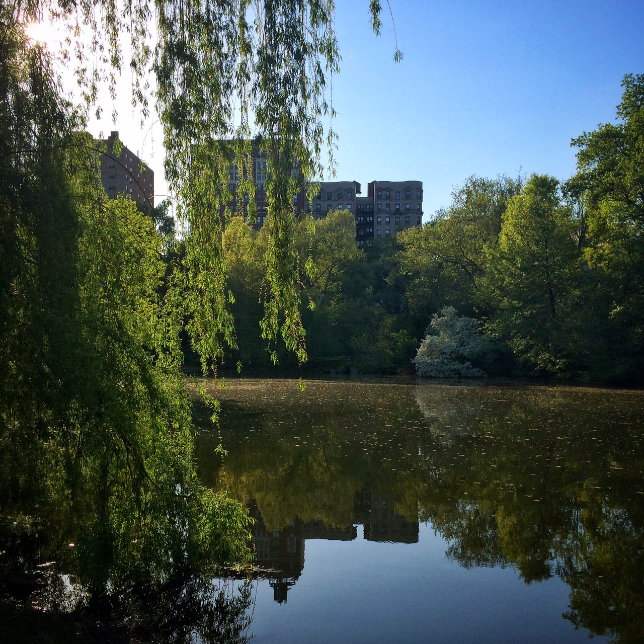 The Lake in Central Park | Hello Little Home