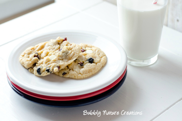 20+ Red, White, and Blue Projects for the 4th of July: Red, White, and Blueberry Cookies from Bubbly Nature Creations | Hello Little Home #FourthOfJuly