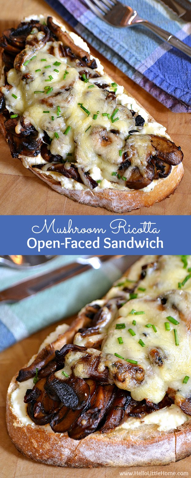 Mushroom Ricotta Open-Faced Sandwich recipe ... a delicious gourmet vegetarian sandwich recipe that mushroom lovers will go nuts for! This easy hot vegetarian sandwich is total comfort food and loaded with mushrooms, ricotta, and ooey gooey cheese!   Hello Little Home