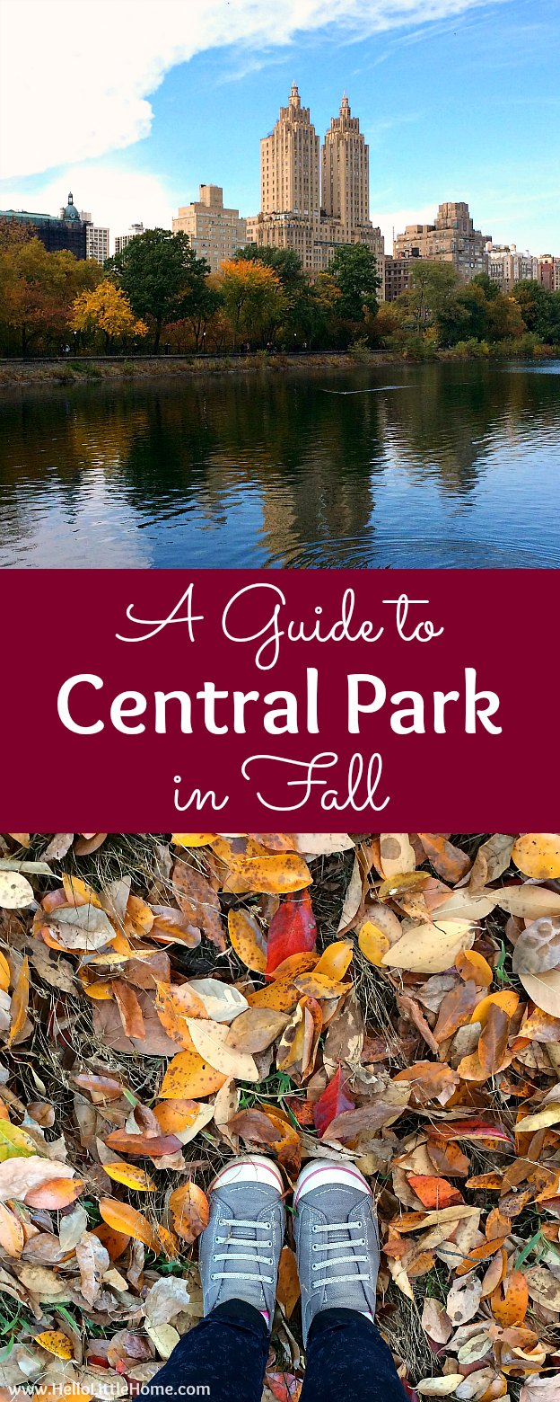 A Guide to Central Park in Fall (in Pictures)! Take a walking tour of NYC's Central Park in autumn ... the fall colors are bucket list worthy! This iconic US park is a top travel destination in Manhattan and autumn is the perfect time to visit. | Hello Little Home