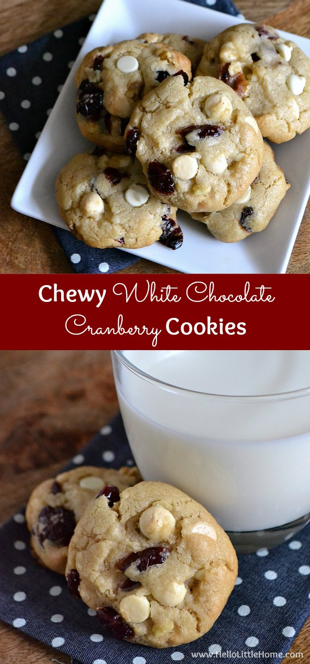 chewy-white-chocolate-cranberry-cookies-10.jpg