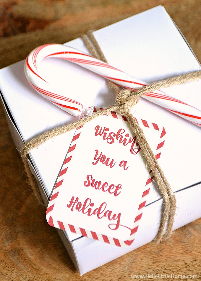 Wishing You a Sweet Holiday gift tag on a box of homemade peppermint bark.