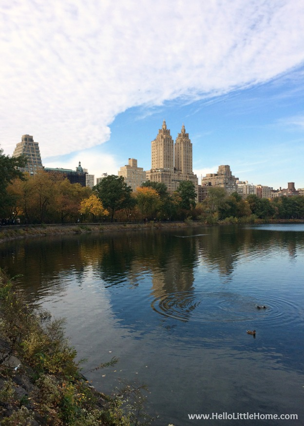 View of the San Remo across the Jackie Kennedy Onassis Reservoir ... part of a Guide to Central Park in Fall (in Pictures)! Take a walking tour of NYC's Central Park in autumn ... the fall colors are bucket list worthy! This iconic US park is a top travel destination in Manhattan and autumn is the perfect time to visit. | Hello Little Home